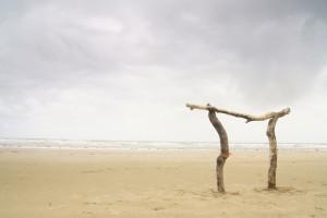 James Tovey driftwood torii saunton beach