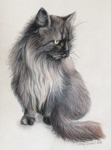 """I am a self taught artist and enjoy creating art of animals, nature and landscapes. Mostly working in pastels and coloured pencils, or oil and acrylic paints on wood, I alsolove using new mediums. I take commissions for pet portraits, scenery and buildings, murals, furniture painting and wooden signs. I work from clients' and my own photos, which I sometimes combine to get the final pose.  I have taken part in the Sky Arts programme, Landscape Artist of the Year 2021, as a wildcard entry at Chartwell House in Kent.      My work is on display and for sale at Fens and Coast in Spalding (https://www.fensandcoast.co.uk).  Follow me on my Instagram page:https://www.instagram.com/wqartanddesign/  Throughout the year, I have been producing lots of landscape paintings in oils using palette knives and brushes. It has been fun to paint in 'plein air' and be outside.Alongside this, I have produced a lot of work on reclaimed wood, and have continued with my pet commissions.                                    Childhood Memories: Artwork in pastel pencils and oils of well-loved toys of past and present generations. I am happy to take commissions for this special theme.  [caption id=""""attachment_6101"""" align=""""alignnone"""" width=""""586""""] Ted Ted in Pastel Pencils.[/caption]  [caption id=""""attachment_6102"""" align=""""alignnone"""" width=""""279""""] Banana Monkey in Pastel Pencils.[/caption]    Vintage toys oils on wooden blocks    """"Old chums"""" oils on canvas"""