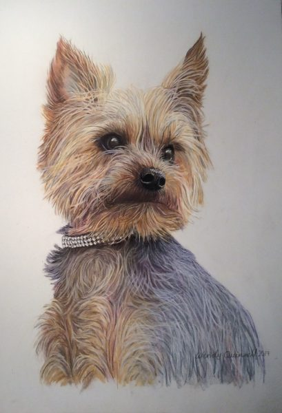 I am a self taught artist and enjoy creating art of animals, nature and landscapes. Mostly working in pastels and coloured pencils, or oil and acrylic paints on wood, I|also love using new mediums. I take commissions for pet portraits,scenery and buildings, murals,furniture painting and wooden signs. I work from clients' and my own photos, which I sometimes combine to get the final pose.