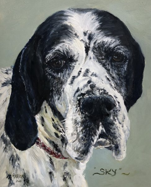 I paint mainly in oils. Although I paint many subjects my main focus is to try and capture light and movement. My style is quite loose and I love working with a palette knife.