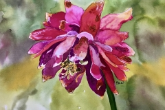 by Pauline Wheatley - Serenity
