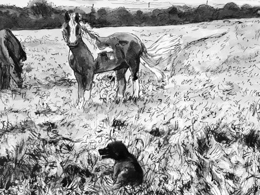 Bez and the horses James Tovey art