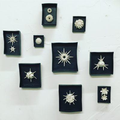 radiolarians porcelain miniature