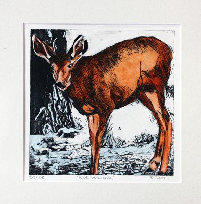 etching of red mule deer, a deer etching in winter,christmas etching of a red deer