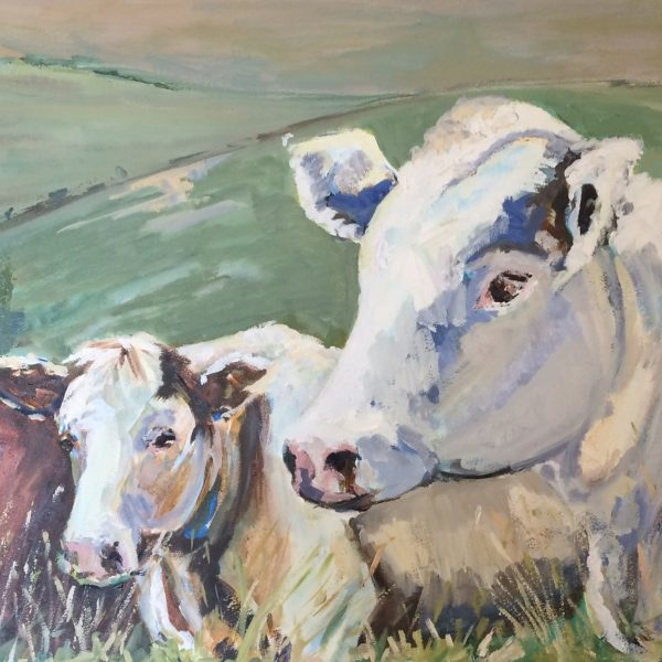 I am inspired by the colour and movement in most rural scenes and particularly enjoy painting the colour and form of farm animals such as horses, sheep and cattle. Primarily interested in figurative work - I also enjoy a more abstract approach to my work I work mainly in Oils and Acrylics and enjoy making figurative ceramics.
