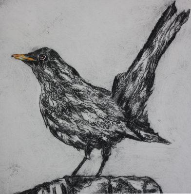 black bird on post